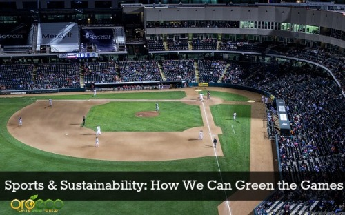 sports and sustainability how to green the games